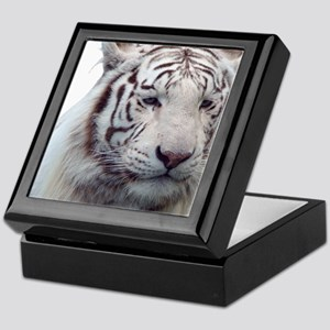 Disappearing Tigers Keepsake Box