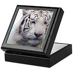 Disappearing Tigers Keepsake Box