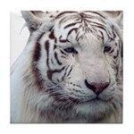 Disappearing Tigers Tile Coaster