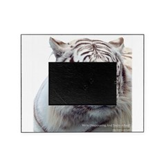 Disappearing Tigers Picture Frame