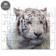Disappearing Tigers Puzzle