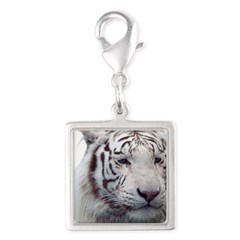 Disappearing Tigers Charms