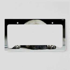 Pug License Plate Holder