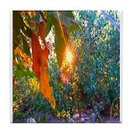 Eden at Sunset Tile Coaster