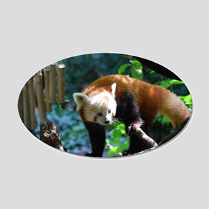 Adorable Climbing Red Panda 20x12 Oval Wall Decal