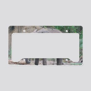 Young Elephant License Plate Holder