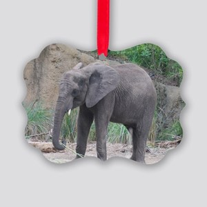 Young Elephant Picture Ornament