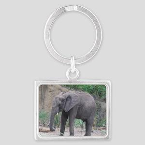 Young Elephant Landscape Keychain