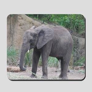 Young Elephant Mousepad