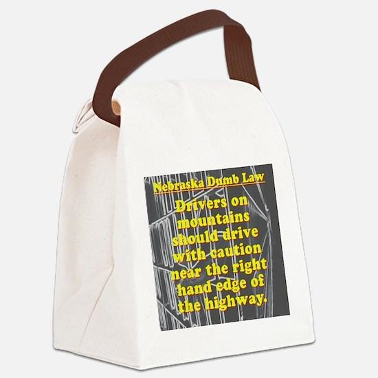 Nebraska Dumb Law 001 Canvas Lunch Bag