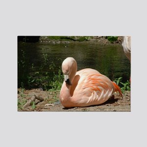 Flamingo Bird Rectangle Magnet