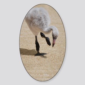 Cute Baby Flamingo Sticker (Oval)