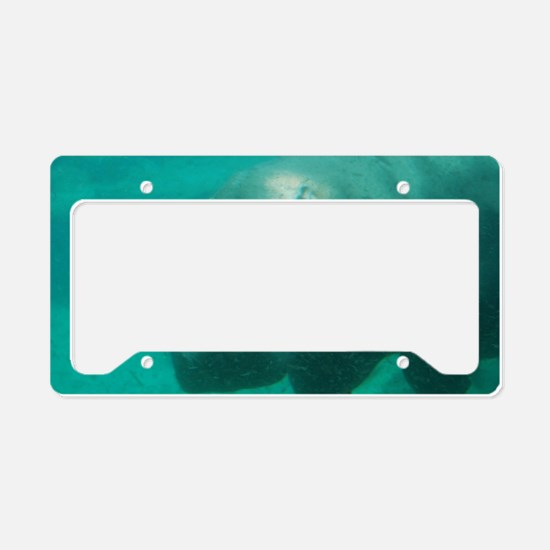Hippo Under the Water License Plate Holder