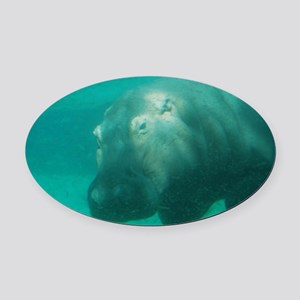 Hippo Under the Water Oval Car Magnet
