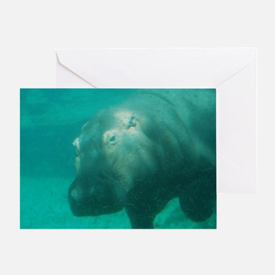 Hippo Under the Water Greeting Card
