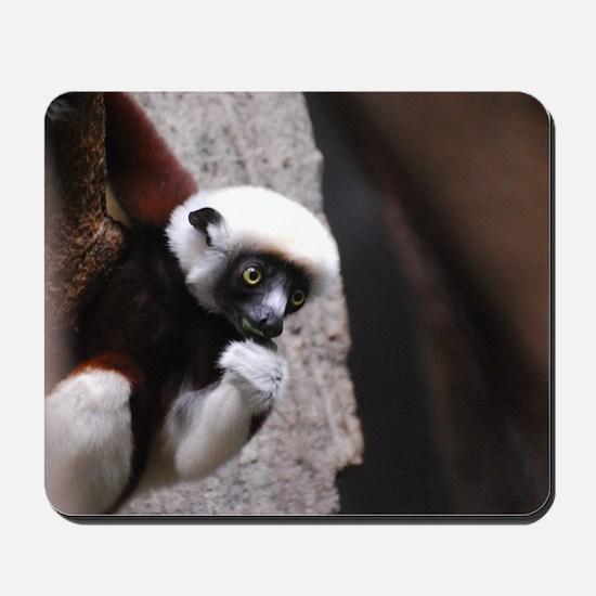 Adorable Safika Lemur Mousepad