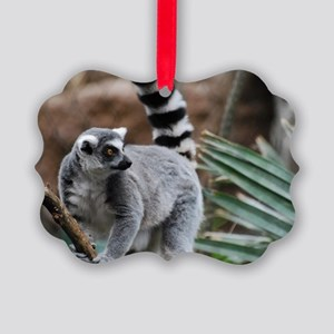 Madagascar Lemur Picture Ornament