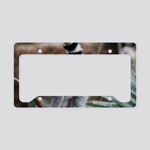 Madagascar Lemur License Plate Holder