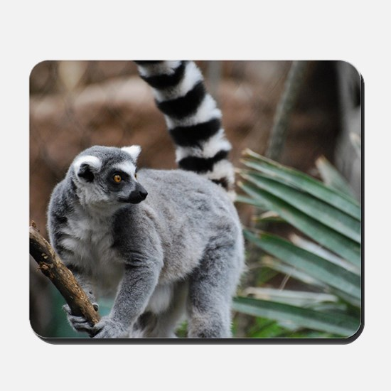 Madagascar Lemur Mousepad