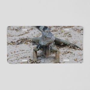 Cute Iguana Aluminum License Plate