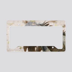 Iguana in the Tropics License Plate Holder
