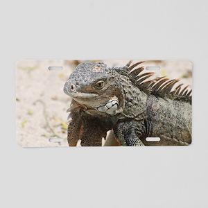 Iguana in the Tropics Aluminum License Plate
