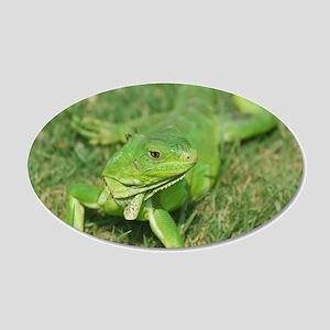 Green Iguana 20x12 Oval Wall Decal