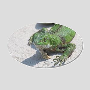 Wild Iguana 20x12 Oval Wall Decal