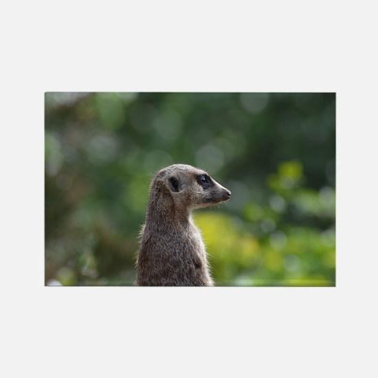 Adorable Meerkat Rectangle Magnet