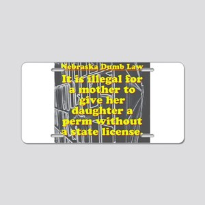 Nebraska Dumb Law 004 Aluminum License Plate