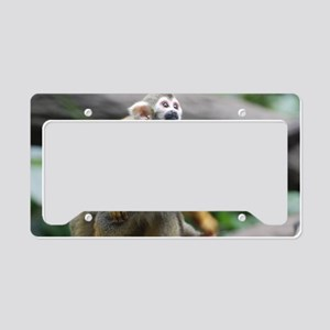 Pair of Squirrel Monkeys License Plate Holder