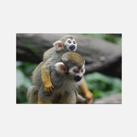 Pair of Squirrel Monkeys Rectangle Magnet