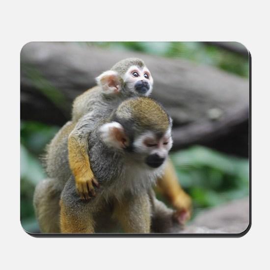 Pair of Squirrel Monkeys Mousepad