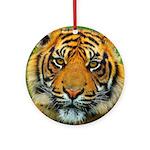 The Last Tiger? Ornament (Round)