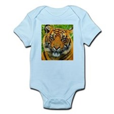 The Last Tiger? Body Suit