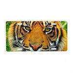 The Last Tiger? Aluminum License Plate