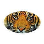 The Last Tiger? Oval Car Magnet