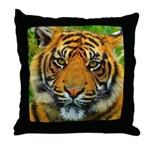 The Last Tiger? Throw Pillow