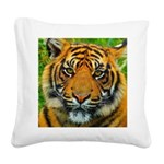 The Last Tiger? Square Canvas Pillow