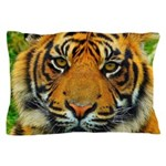 The Last Tiger? Pillow Case