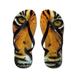 The Last Tiger? Flip Flops