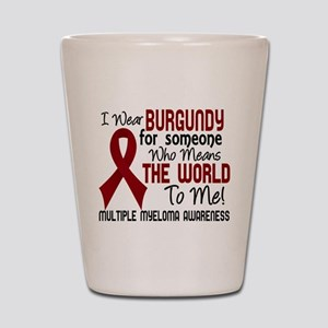 Multiple Myeloma Means World To Me 2 Shot Glass