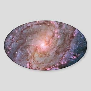 M83 Southern Pinwheel Galaxy Sticker (Oval)