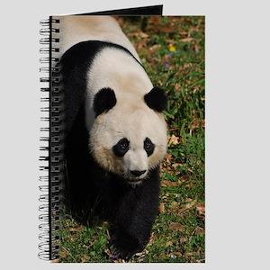 Giant Panda Bear Strutting His Stuff Journal