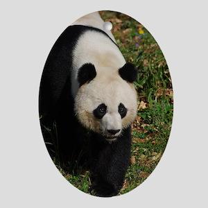 Giant Panda Bear Strutting His Stuff Oval Ornament