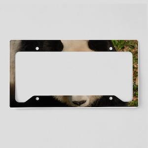Cute Black and White Panda Fa License Plate Holder