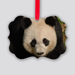 Cute Black and White Panda Face Picture Ornament