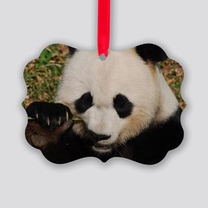 Panda Snacking Picture Ornament