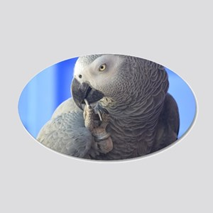 Itching Grey Parrot 20x12 Oval Wall Decal