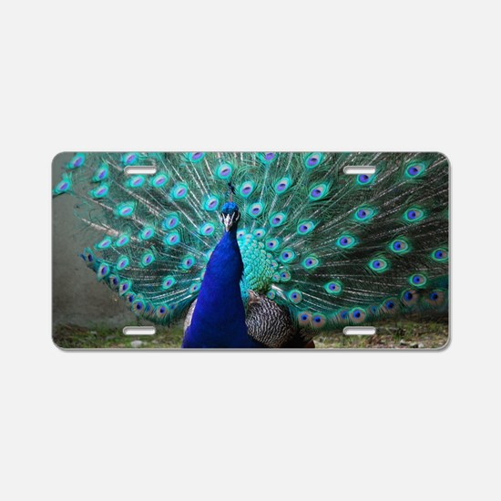 Peacock Plummage Aluminum License Plate